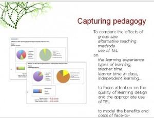 LDSE pedagogy pie chart