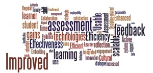 Assessment and Feedback themes/issues wordle